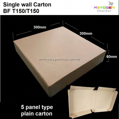 (Self Collect) 10pcs Keyogen Single Wall Carton for Packing BF T150/T150